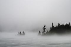Ommadawn (wemidji) Tags: arbre tree hiver winter brouillard fog