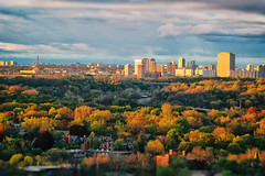 Toronto's Tales of Dales. Golden Cityscapes of May (Katrin Ray) Tags: torontostalesofdales goldencityscapesofmay spring may evening sunset golden light colours green orange red yellow oaks maples elms trees ontariotrees buildings sky rosedale donvalley ontario canada katrinray dreamscapesoftoronto tiltshift canonphotography canon eos rebel t6i 750d toyrontolife toyland tilfshift miniaturestyle photoshoptiltshift digimagic digiart