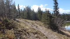 Time for a rest at crescent lake (davebloggs007) Tags: yamnuska crescent lake alberta canada