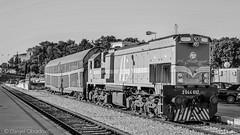 2044 017 in Split b&w (deniob86) Tags: nikon d3200 railway split hrvatska croatia hrvatske zeljeznice shunting manevra lokomotiva 2044 mala karavela leto summer jutro morning train voz vlak