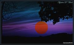 Composizione con il tramonto di oggi - 20-Aprile-2017 (agostinodascoli) Tags: art digitalart digitalapinting nature landscape creative texture paesaggi sunset sole cielo cianciana sicilia agostinodascoli alberi photoshop photopainting