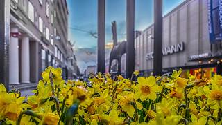22.4.2017 Lauantaiaamu Saturdaymorning Turku Ã…bo Finland