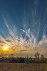 Cirus Cloud Study 3 Photos (thefisch1) Tags: cirus cloud sky horizon tree linear cold high sunset kansas