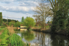 Lichfield canal (cattan2011) Tags: longboats reflections traveltuesday travelbloggers travelphotography travel england midlands lichfield canal waterscape natureperfection naturephotography nature landscapephotography landscape