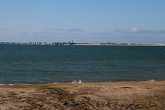 View of Sandy Neck (robincagey) Tags: cape cod massachusetts new england barnstable nature bay