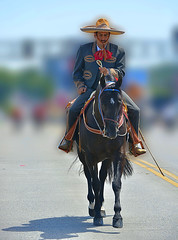 Awesome Riding (swong95765) Tags: horse rider mexican style bokeh hat outfit