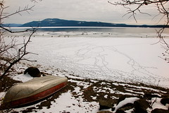 goosesteps (Elsie Funk) Tags: lake snow canada ice landscape frozen geese spring footprints swans rowboat northern