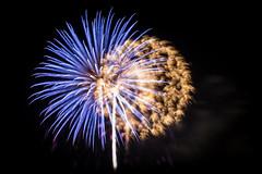 Feuerwerk_20140501_21.56.42 (jimx9999) Tags: longexposure blue flower art flora focus artistic fireworks firework prater feuerwerk langzeitbelichtung blumeneffekt