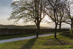 Burggarten / Biergarten
