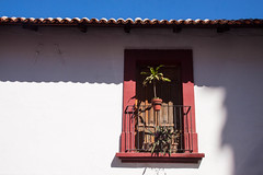 Window in Old Town, Puerto Vallarta, Mexico (ChrisGoldNY) Tags: city travel windows red urban plants latinamerica americalatina architecture buildings poster mexico design forsale jalisco mexican viajes posters albumcover vallarta puertovallarta bookcover oldtown bookcovers albumcovers licensing chrisgoldny chrisgoldberg chrisgold chrisgoldphoto chrisgoldphotos chrisgoldla