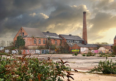 Derelict Industrial Landscape (Beardy Vulcan) Tags: winter chimney england landscape graffiti march bush industrial factory leicestershire leicester victorian ruin derelict butterflybush 2014 danehills derelictindustriallandscape premierscrewfactory