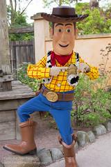 Woody (Rare)