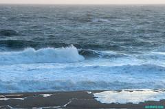 StormSurf104 (mcshots) Tags: ocean california sea usa storm beach water coast sand surf waves afternoon stock windy spray socal rough breakers mcshots winds swells seas springtime losangelescounty