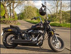 Cross Bones Carbeth (sublevel3) Tags: black scotland motorcycles harley motorbike harleydavidson motorcycle biker hd custom softail apes crossbones davida g12 apehangers carbethinn flstsb motorcycleontheroad