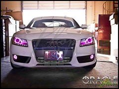 Pink eye car (ShopPMLIT.com) Tags: auto new york city light urban usa white newyork art love beautiful car canon fun lights photo oracle cool nikon offroad earth euro parts awesome halo roadtrip headlights led rings plasma custom audi a5 taillights mods headlamps modify automotiveparts angeleyes caraccessories modifications foglights ccfl carlamps projectorheadlights audia5 carlighting customheadlights oraclelights shoppmlit pmlit haloringlights