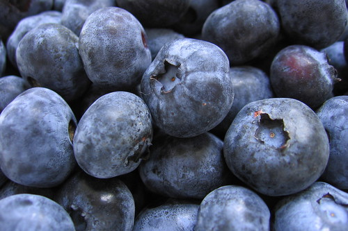 Blueberries by theglobalpanorama, on Flickr
