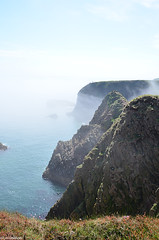 Haar at the coast (LynG67) Tags: coast scotland cliffs thrift haar scotchmist bullersobuchan