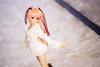 IMG_7556 (jtaisa) Tags: travel snow japan toy momo doll hokkaido 北海道 ドール dd otaru 雪 xenosaga 小樽 dollfiedream hokkaidoprefecture ドルフィー・ドリーム momomizrahi