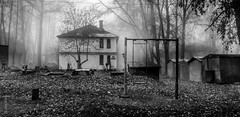 --- (koliru) Tags: morning mist dark blackwhite foggy olympus e300 50200mm fogg ufa