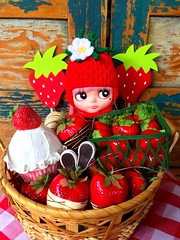BaD-May 19, 2014 Strawberries (missdoolittles) Tags: red hat strawberry berry doll day dress crochet helmet may hats strawberries blythe custom helmut jam beanie miss strawberryjam 2014 doolittles missdoolittles blytheaday basaak