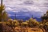 43aStormy Sky Paule Hjertaas (paule48) Tags: arizona usa weather landscape az stormcloud sonorandesert landform arizonausa mountainlandform hwy86ajotucson