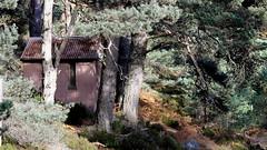 The Half Way Hut. (northernkite) Tags: way glen hut half tanar