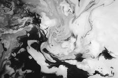 Milk and Ink (Sasha Heist) Tags: blackandwhite abstract ink flow milk bath patterns marble