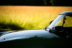 (Kriss on flickr) Tags: old car french nikon 85mm voiture ancienne d800 panhard levassor
