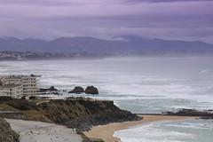 Violet seaside (joelophoto...) Tags: sea coast cloudy violet cliffs filter