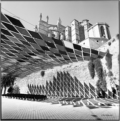 Catedral_Palma de Mallorca_Hass (ksadjina) Tags: 6x6 film analog blackwhite scan mallorca hasselblad500cm kodak400tmx 10min adoxaph09 nikonsupercoolscan9000ed carlzeissdistagon40mmf14