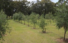 406a Turpentine Rd, Tomerong NSW