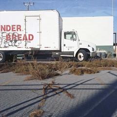 White bread (ADMurr) Tags: 6x6 film lines rollei wonder bread la weeds kodak mf leading planar ektar southla