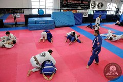 20140726_0065 (Wolf Pictures) Tags: martial arts bjj