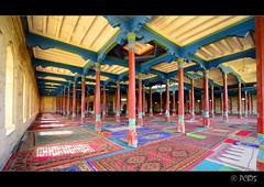 Va de catifes (PCB75) Tags: china alfombra muslim mosque xinjiang mezquita rug chine xina mosque mesquita estores sinkiang kucha kuche kuqa musulmans catifa pregria greentiles estora catifes pregries