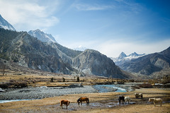 Mustang Valley (Ali Sabbagh) Tags: nepal himalayas mountains landscape annapurna canon eos7d nature world travel hiking trekking outdoor journey life earth