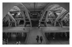 Calatrava goes Ridley Scott (Estação do Oriente) (AurelioZen) Tags: europe portugal lisboa parquedasnacoes estaçãodooriente travelers calatrava ridleyscott