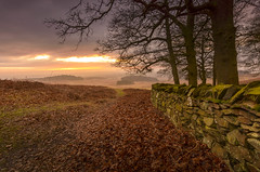 Dawn at Old John Wood (John__Hull) Tags: dawn sunrise wall dry stone wood leaves winter bradgate park clouds view newtown linford charnwood leicestershire landscape nature nikon d3200 sigma 1020mm path england uk