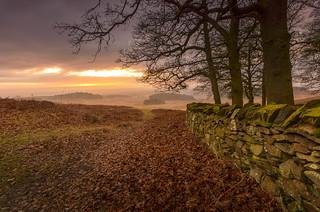 Dawn at Old John Wood