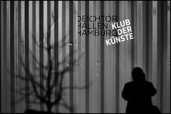 club of arts II (look-book) Tags: hamburg deichtorhallen klubderkünste leica m8 noctilux f095 50mm lookbook fotos foto analogicas bw self developed film blackandwhite blackwhite black white blancoynegro noiretblanc analog
