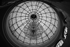 Lobby Lines (Jane Inman Stormer) Tags: dome ceiling chandelier glass skylight rotunda window china blackandwhite lushannationalpark mtlu architecture circle monochrome roof lines curve