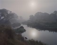 (roundtheplace) Tags: landscape landscapephotography australia australianlandscape analogphotography australianbush pentax67 portra portra160 fog film mediumformat river snowyhydro snowhydroscheme snowymountains nsw