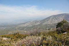 IMG_0612 (Gilles Couteau) Tags: provence vaucluse ventoux montventoux