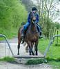 20170415-BQ__4971.jpg (brian.quinlan) Tags: animals kez athertonoldhallfarm horses