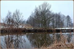 Paradies am Fluss - Paradise by the river! (Karabelso) Tags: water river trees landscabe wasser fluss mulde landschaft zwickau sachsen germany panasonic lumix gx7