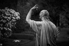 at his grave again (blattboldt) Tags: graveyard friedhof eichfriedhof kiel sculpture skulptur escultura scultura statua statue blackwhite schwarzweis noiretblanc biancoenero 黑白 白黑 雕像 雕塑 sony ilce7sm2 alpha7sii zeiss loxia2485 loxia2485sonnar sonnar frau woman donna femme lightandshadow patina shallowdepthoffield dof dark dunkel monochrom monochrome