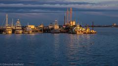 P4170036.jpg (shyto) Tags: bostonharbor pierspark eastboston facebook sunset flickr edmondhatfield