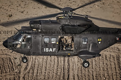 COPYRIGHT. FRANCISCO FRANCÉS TORRONTERA. (16) (Francisco Francés Torrontera (Oroel)) Tags: famet fuerzasarmadasespañolas fuerzasaeromóvilesdelejércitodetierra eurocopter ejércitodetierra ejércitoespañol airbushelicopter as532 as532cougar afganistan afganistanspanishunithelicoter afganistanwar cougar cougaral w