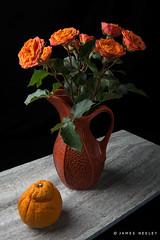 Thinking Orange (James Neeley) Tags: stilllife fineart santafeworkshops jamesneeley