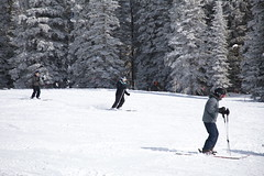 2017-00455 (kjhbirdman) Tags: activities bower businesspeople colorado people places snowskiing steamboatsprings unitedstates vascularsurgerycolleagues