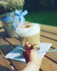 Marienkäfer (kathibro92) Tags: marienkäfer summer spring frühling sommer punkte spots coffee kaffee garden flower fly fliegen flügel cologne nature red insect animal käfer